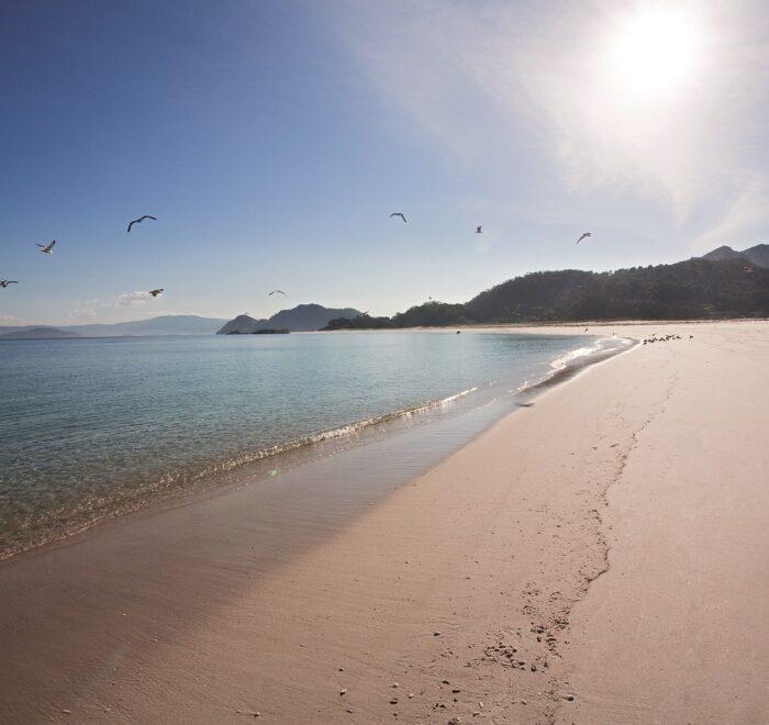 5 curiosidades sobre las Islas Cíes que tienes que saber