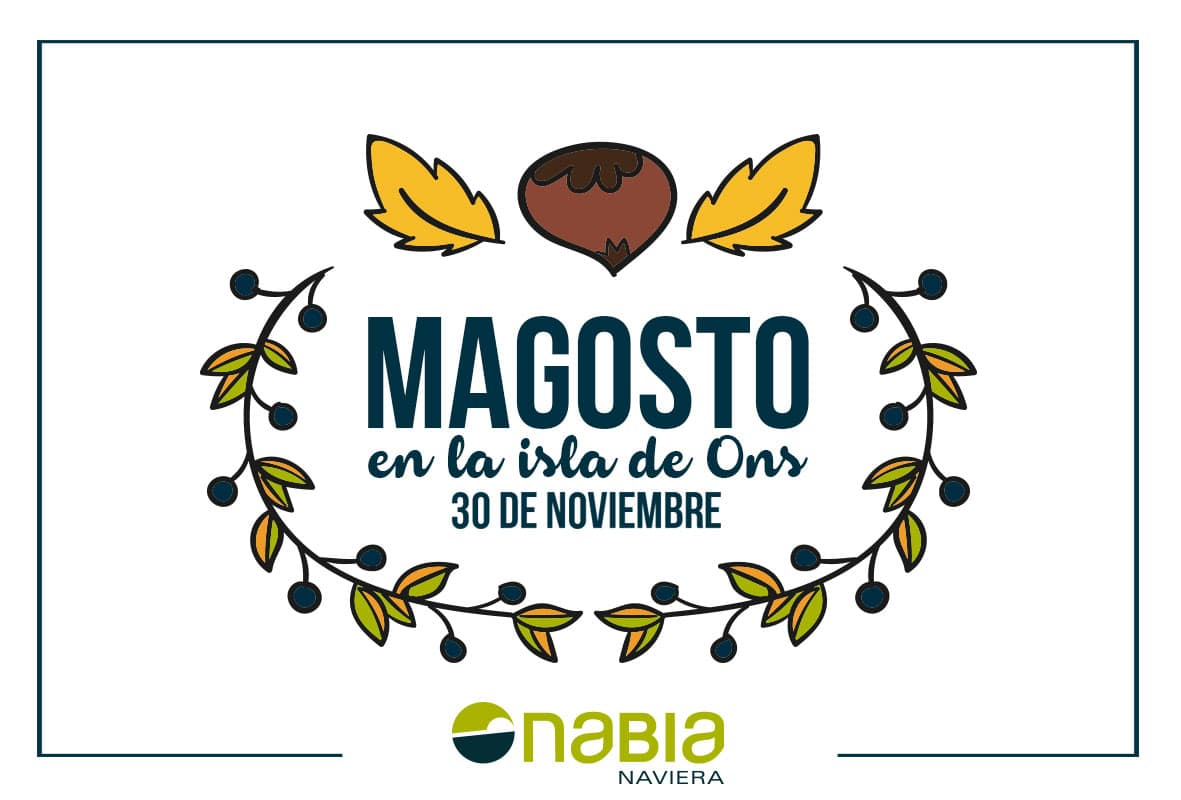 Magosto-web