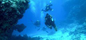 buceo en Parque Nacional marítimo terrestre de las Islas Cíes