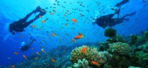 bautismo buceo islas cies