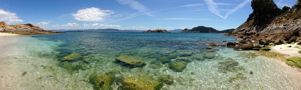 Fauna en las islas Cíes y Ons (Islas Atlanticas de Galicia)