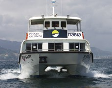 pirata-de-onza