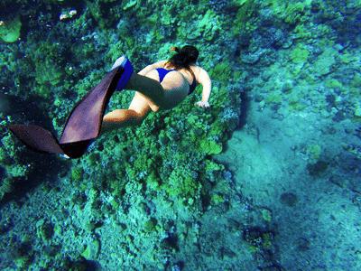 snorkel y buceo en Islas Cíes