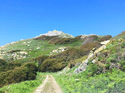 senderismo Ruta Faro Porta en Cíes Nabia