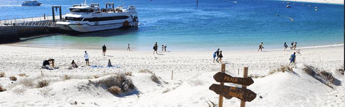 Que hacer en tu visita a Islas Cíes